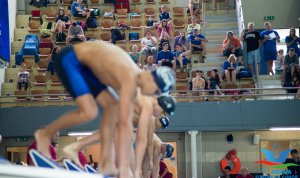 Three swimmers from Hódmezővásárhely are participating in the European Championship